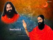Swami Ramdev ji wallpaper ,  yellow , blue and red color