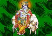 Lord Krishna Image, green color